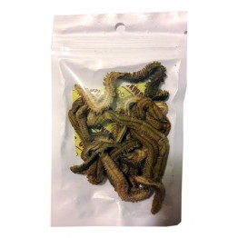 Сушеный морской червь Nereis